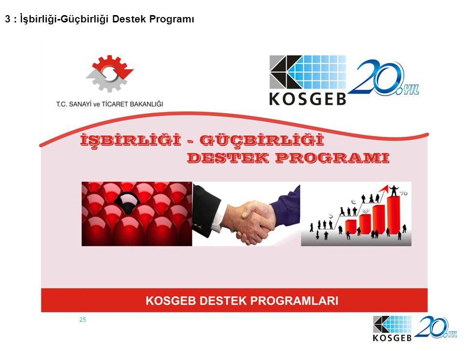 25 3 : İşbirliği-Güçbirliği Destek Programı