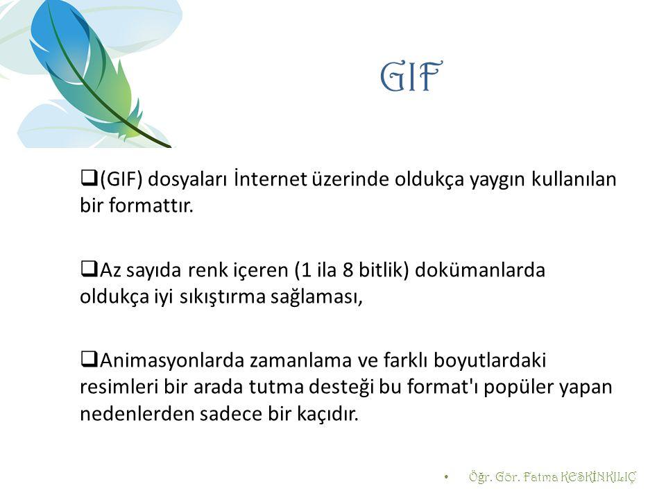 GIF  (GIF) dosyaları İnternet üzerinde oldukça yaygın kullanılan bir formattır.  Az sayıda renk içeren (1 ila 8 bitlik) dokümanlarda oldukça iyi sık
