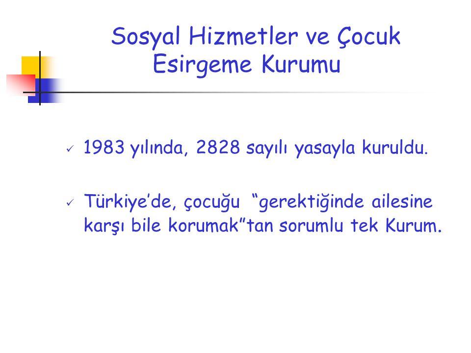 """Sosyal Hizmetler ve Çocuk Esirgeme Kurumu 1983 yılında, 2828 sayılı yasayla kuruldu. Türkiye'de, çocuğu """"gerektiğinde ailesine karşı bile korumak""""tan"""