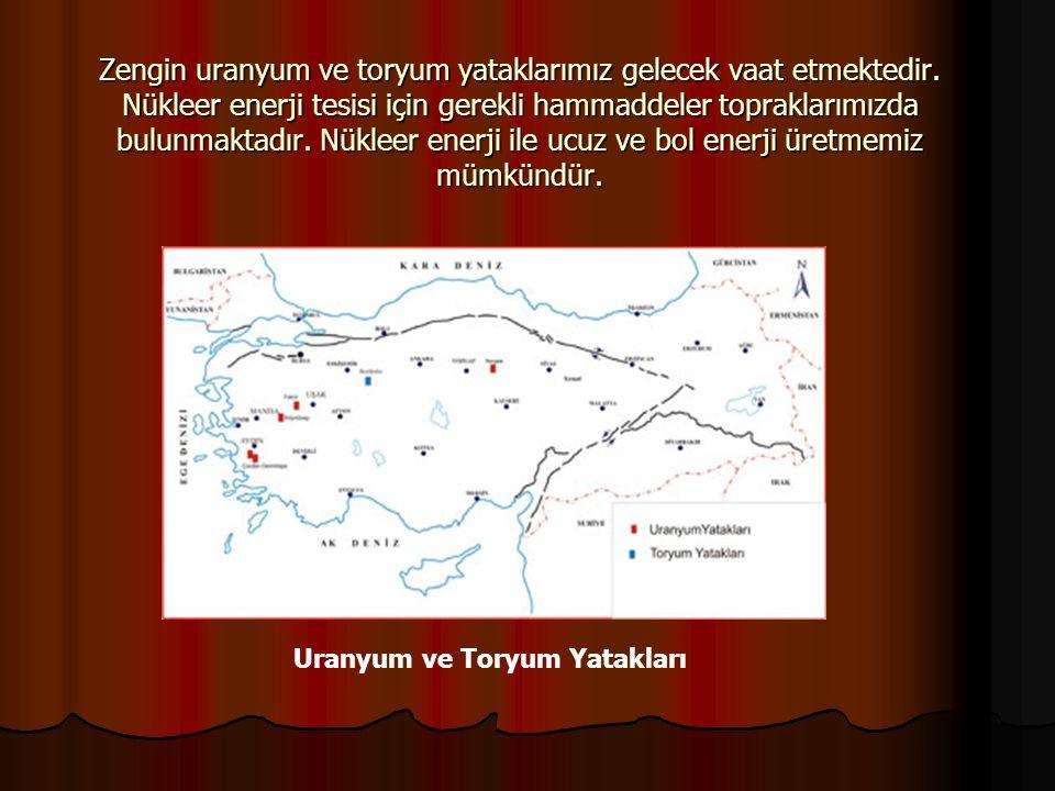 Zengin uranyum ve toryum yataklarımız gelecek vaat etmektedir. Nükleer enerji tesisi için gerekli hammaddeler topraklarımızda bulunmaktadır. Nükleer e