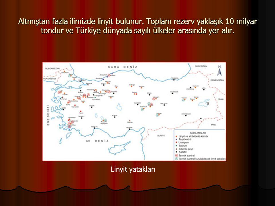 Altmıştan fazla ilimizde linyit bulunur. Toplam rezerv yaklaşık 10 milyar tondur ve Türkiye dünyada sayılı ülkeler arasında yer alır. Linyit yatakları