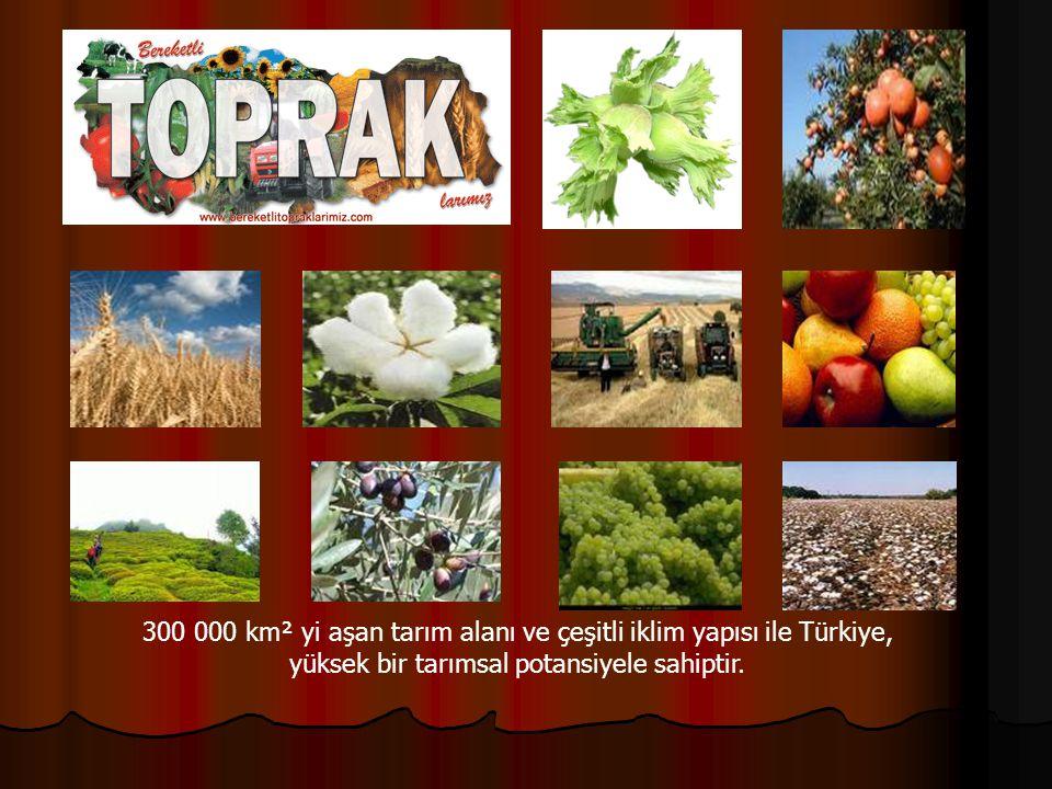 300 000 km² yi aşan tarım alanı ve çeşitli iklim yapısı ile Türkiye, yüksek bir tarımsal potansiyele sahiptir.