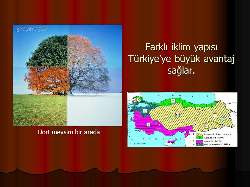 Farklı iklim yapısı Türkiye'ye büyük avantaj sağlar. Dört mevsim bir arada