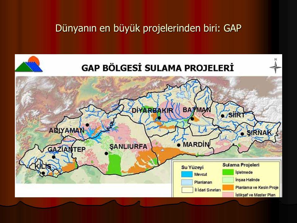 Dünyanın en büyük projelerinden biri: GAP