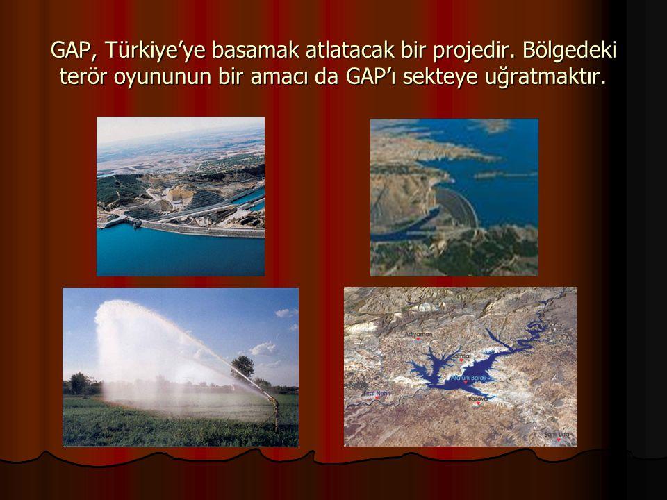 GAP, Türkiye'ye basamak atlatacak bir projedir. Bölgedeki terör oyununun bir amacı da GAP'ı sekteye uğratmaktır.