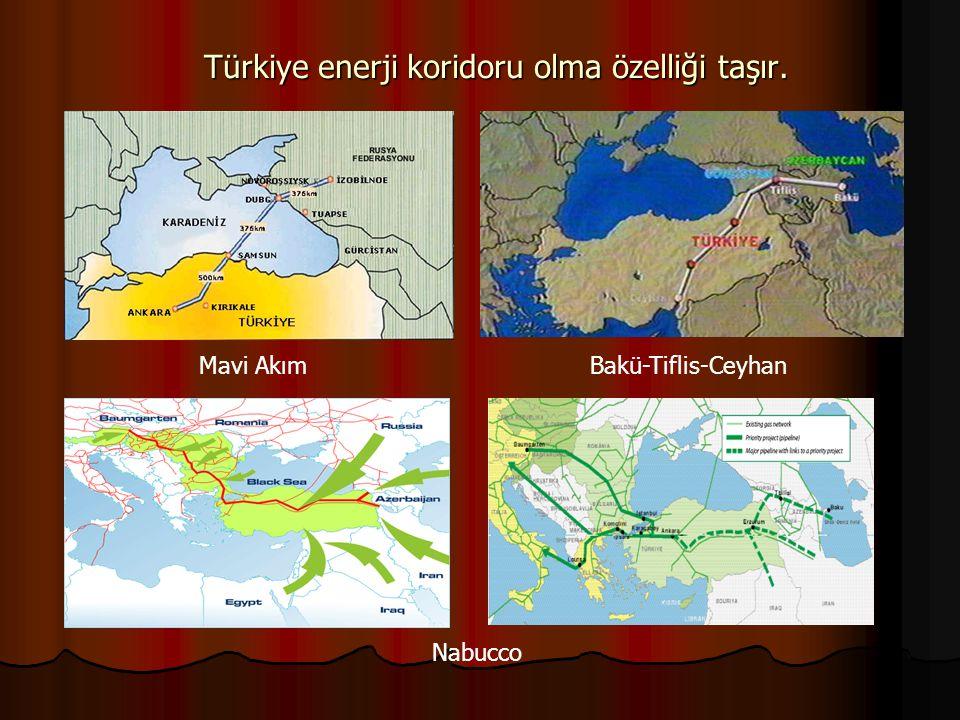 Türkiye, farklı arazi yapısıyla tarım, hayvancılık, turizm ve daha birçok alanda avantajlara sahiptir.