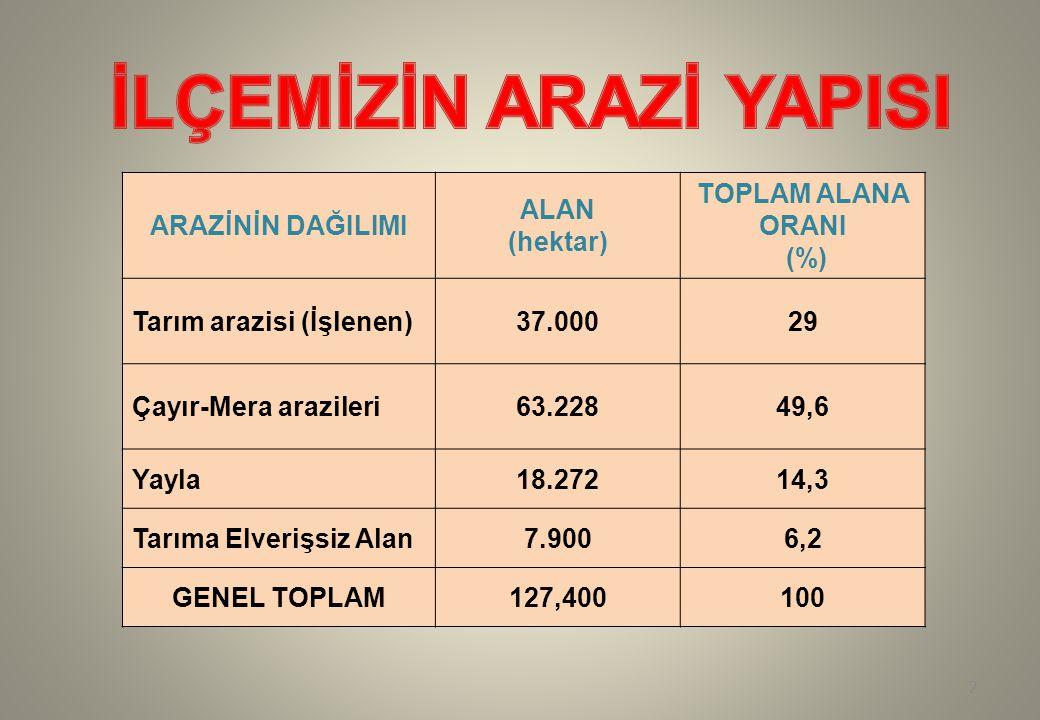 ARAZİNİN DAĞILIMI ALAN (hektar) TOPLAM ALANA ORANI (%) Tarım arazisi (İşlenen)37.00029 Çayır-Mera arazileri63.22849,6 Yayla18.27214,3 Tarıma Elverişsi