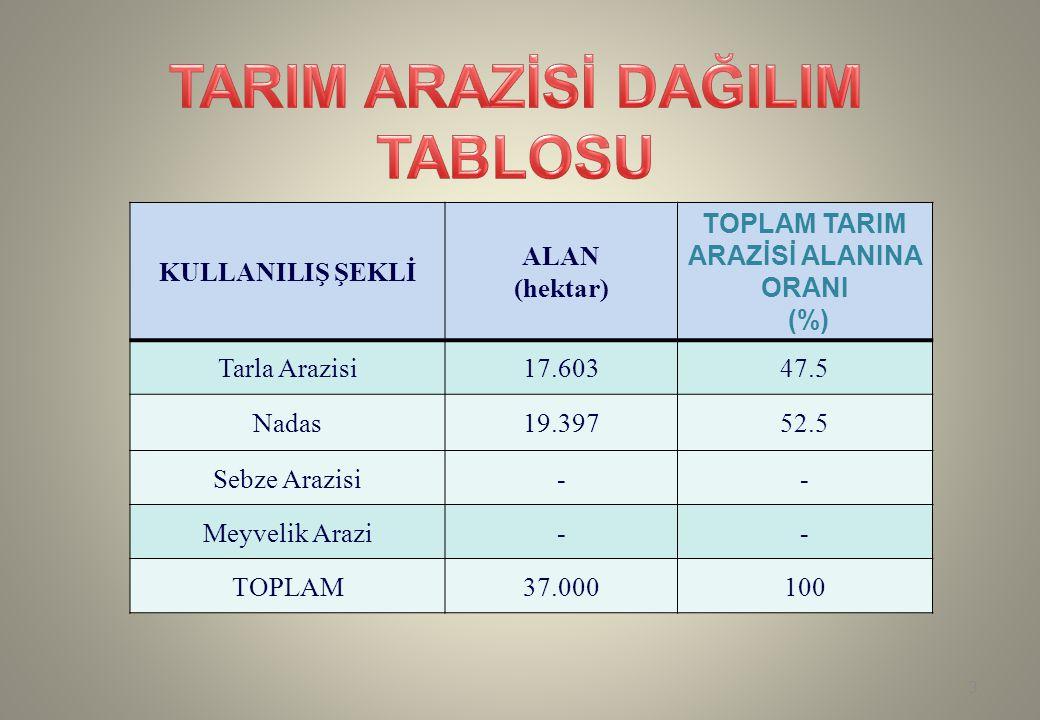 KULLANILIŞ ŞEKLİ ALAN (hektar) TOPLAM TARIM ARAZİSİ ALANINA ORANI (%) Tarla Arazisi17.60347.5 Nadas19.39752.5 Sebze Arazisi-- Meyvelik Arazi-- TOPLAM3
