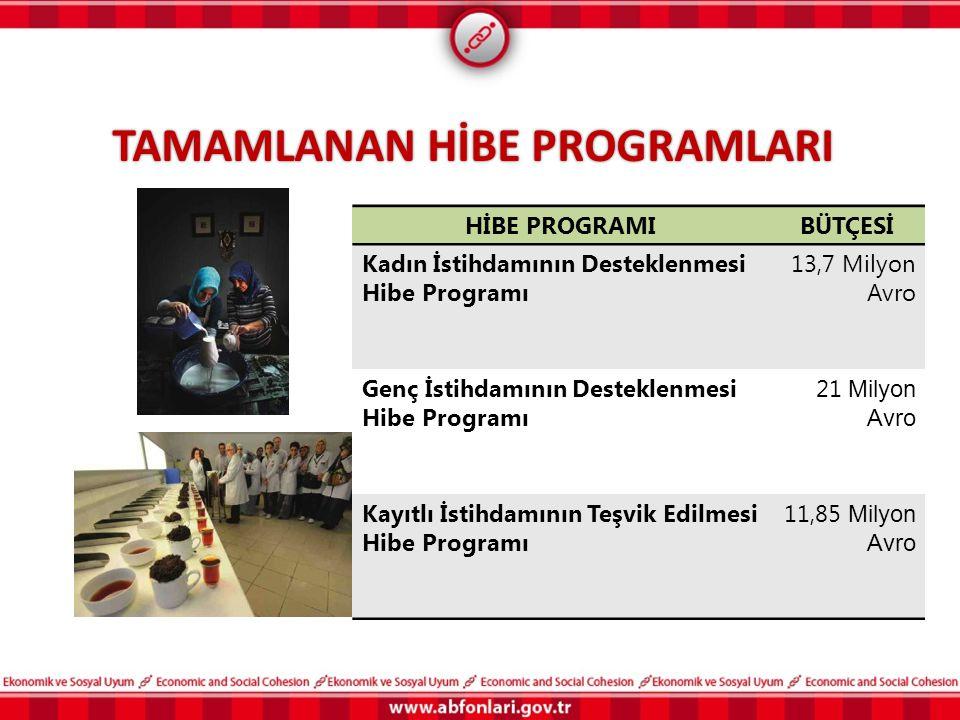 TAMAMLANAN HİBE PROGRAMLARI HİBE PROGRAMIBÜTÇESİ Kadın İstihdamının Desteklenmesi Hibe Programı 13,7 Milyon Avro Genç İstihdamının Desteklenmesi Hibe