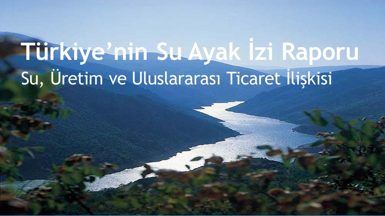 İÇERİK Sanal su-su ayak izi bileşenleri Türkiye'nin su ayak izi Yöntem veri kaynakları Üretimin ve tüketimin su ayak izi Kişi başına düşen su ayak izi İhracat ve ithalatın su ayak izi Karar vericiler-iş dünyası-bireyler