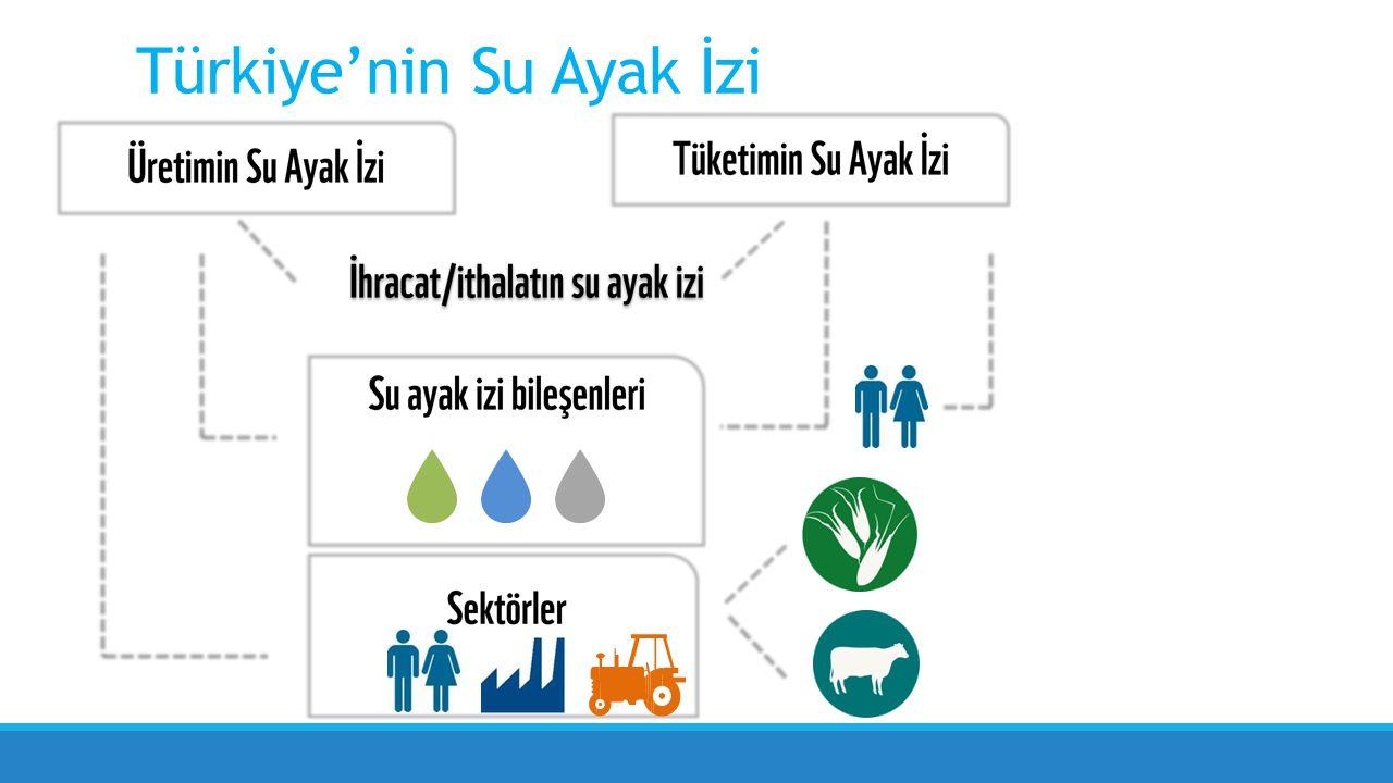 Türkiye'nin Su Ayak İzi
