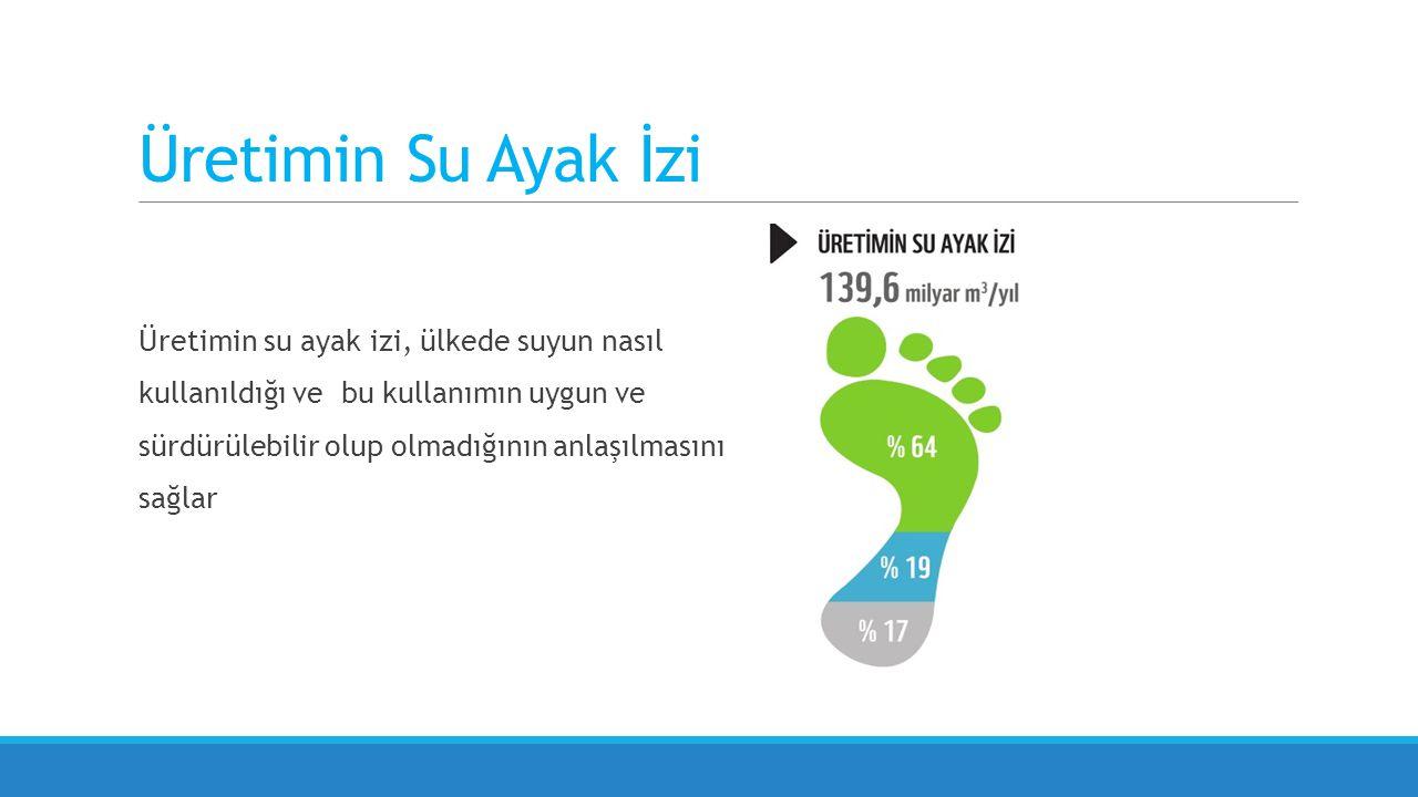 Üretimin su ayak izi, ülkede suyun nasıl kullanıldığı ve bu kullanımın uygun ve sürdürülebilir olup olmadığının anlaşılmasını sağlar