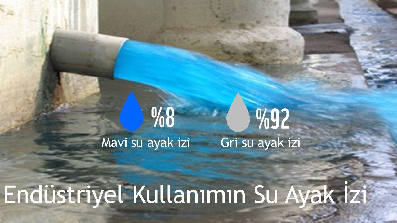 Endüstriyel Kullanımın Su Ayak İzi Mavi su ayak izi Gri su ayak izi