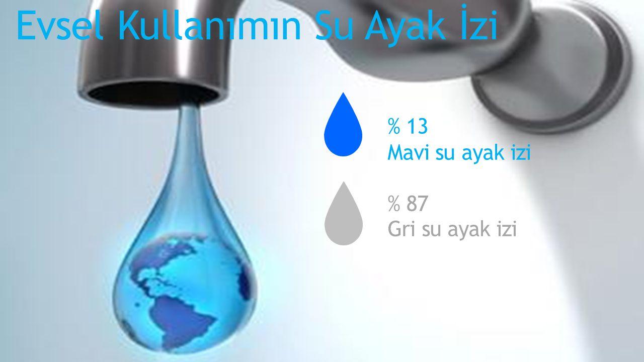 Evsel Kullanımın Su Ayak İzi % 13 Mavi su ayak izi % 87 Gri su ayak izi