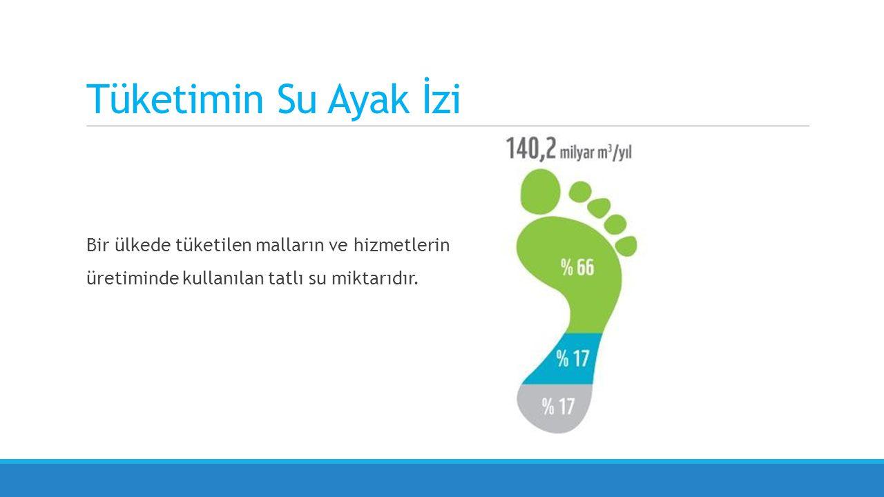 Bir ülkede tüketilen malların ve hizmetlerin üretiminde kullanılan tatlı su miktarıdır.
