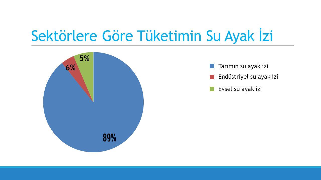Sektörlere Göre Tüketimin Su Ayak İzi Endüstriyel su ayak izi Evsel su ayak izi Tarımın su ayak izi 5% 6%