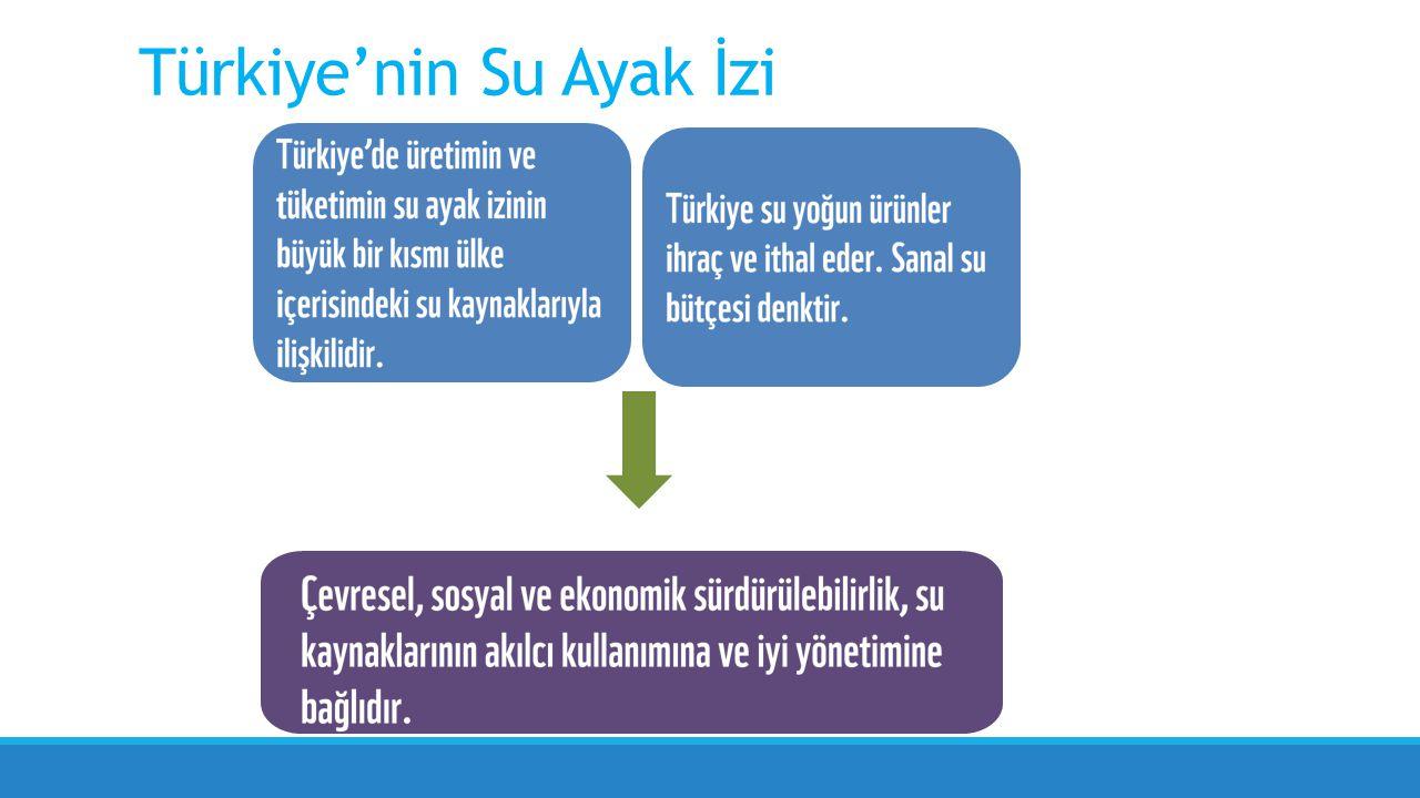 Türkiye'nin su ayak izi (Mm³/yıl) (TÜİK, WFN, FAOSTAT) Türkiye'nin Su Ayak İzi