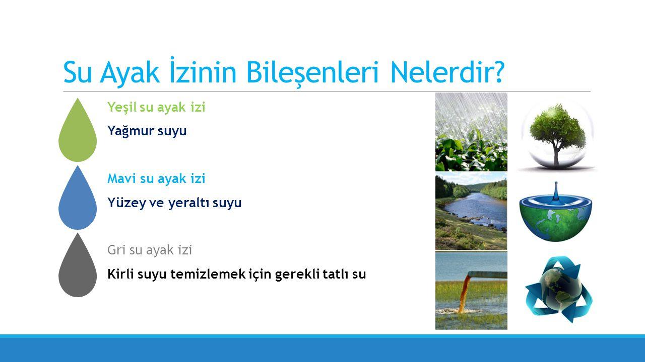 Su kullanımında değişim: pamuktan tekstil üretimine Türkiye pamuk üretiminin %50'sini ihraç ediyor Mavi su ayak izinin etkileri gri su ayak izine doğru kayıyor Su yoğun tedarik zinciri: %60'ı pamuk işleme Gri su ayak izi etkileri, sürdürülebilirlik ve tedarik zincirinde risk yönetimiyle ilişkili