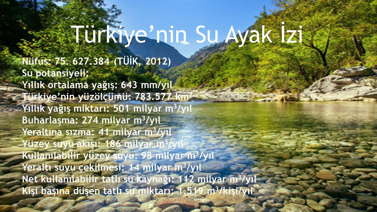 1.Nehir havzası ölçeğinde su ayak izi analizleri yapılmalı 2.Ulusal ve bölgesel kalkınma planlarında tarım, sanayi, kentleşme, enerji ve turizm sektörlerine yönelik stratejilerin su politikalarına entegre edilmesi 3.Hazırlanacak olan Türkiye'nin Ulusal Su Stratejisi ile Ulusal Havza Yönetim Stratejisi ve Eylem Planı'na su ayak izi yaklaşımı dahil edilmeli 4.Türkiye'nin mevcut su kaynakları üzerindeki riskleri ortaya konulmalı ve nehir havzası planlama sürecinde riskleri ortadan kaldıracak düzenlemeler getirilmeli 5.Su yönetimi süreçlerinde ve su kaynaklarıyla ilişkili üretim alanlarında kamu dışı paydaşlarla işbirlikleri kurulmalı 6.Havza yönetim planlarında zarar görmüş tatlı su ekosistemlerinin rehabilitasyonu öncelikli olarak ele alınmalı