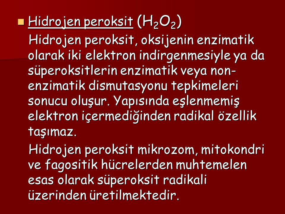 Hidrojen peroksit (H 2 O 2 ) Hidrojen peroksit (H 2 O 2 ) Hidrojen peroksit, oksijenin enzimatik olarak iki elektron indirgenmesiyle ya da süperoksitl
