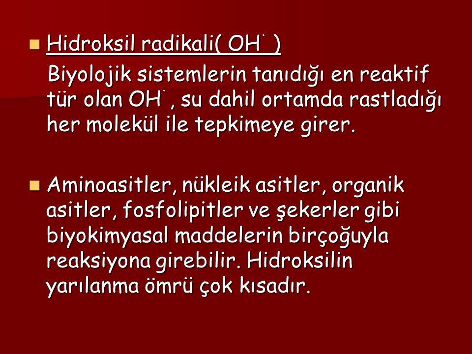 Hidroksil radikali( OH ˙ ) Hidroksil radikali( OH ˙ ) Biyolojik sistemlerin tanıdığı en reaktif tür olan OH ˙, su dahil ortamda rastladığı her molekül