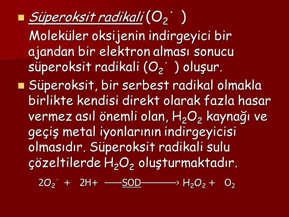Hidrojen peroksit (H 2 O 2 ) Hidrojen peroksit (H 2 O 2 ) Hidrojen peroksit, oksijenin enzimatik olarak iki elektron indirgenmesiyle ya da süperoksitlerin enzimatik veya non- enzimatik dismutasyonu tepkimeleri sonucu oluşur.