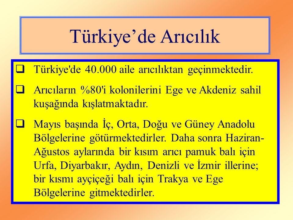 Türkiye'de Arıcılık  Türkiye'de 40.000 aile arıcılıktan geçinmektedir.  Arıcıların %80'i kolonilerini Ege ve Akdeniz sahil kuşağında kışlatmaktadır.