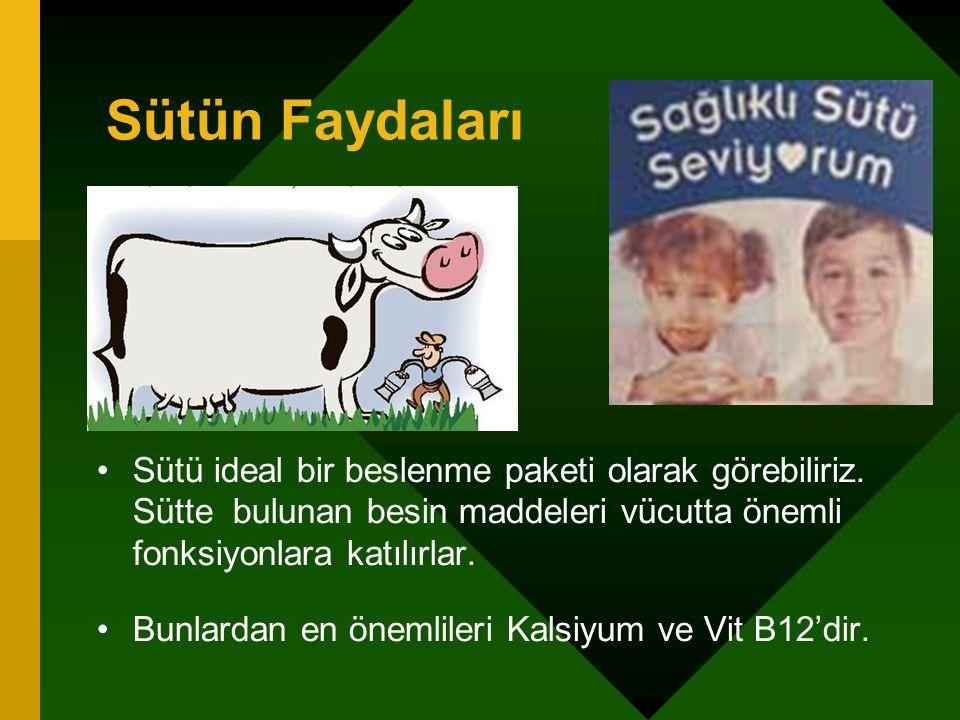 Sütün Faydaları Sütü ideal bir beslenme paketi olarak görebiliriz. Sütte bulunan besin maddeleri vücutta önemli fonksiyonlara katılırlar. Bunlardan en