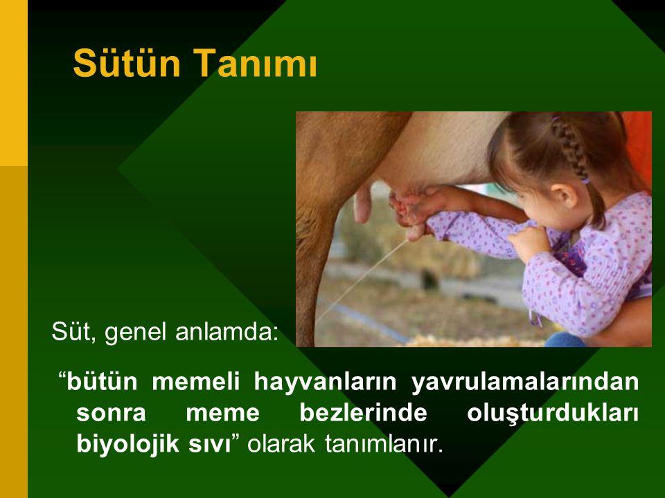"""Sütün Tanımı Süt, genel anlamda: """"bütün memeli hayvanların yavrulamalarından sonra meme bezlerinde oluşturdukları biyolojik sıvı"""" olarak tanımlanır."""