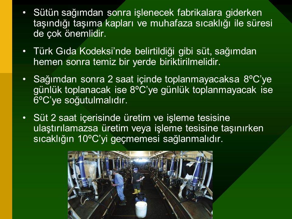 Sütün sağımdan sonra işlenecek fabrikalara giderken taşındığı taşıma kapları ve muhafaza sıcaklığı ile süresi de çok önemlidir. Türk Gıda Kodeksi'nde