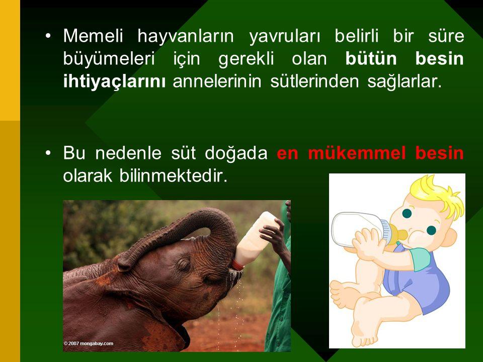 Dünyada ve Türkiye'de süt üretimi (x1000Ton) (FAO) 200120022003200420052006 Türkiye 9810 11 ABD 7477 8082 AB 154155 153154153 Dünya 589602616627644653