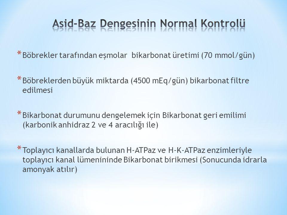 * Böbrekler tarafından eşmolar bikarbonat üretimi (70 mmol/gün) * Böbreklerden büyük miktarda (4500 mEq/gün) bikarbonat filtre edilmesi * Bikarbonat durumunu dengelemek için Bikarbonat geri emilimi (karbonik anhidraz 2 ve 4 aracılığı ile) * Toplayıcı kanallarda bulunan H-ATPaz ve H-K-ATPaz enzimleriyle toplayıcı kanal lümenininde Bikarbonat birikmesi (Sonucunda idrarla amonyak atılır)