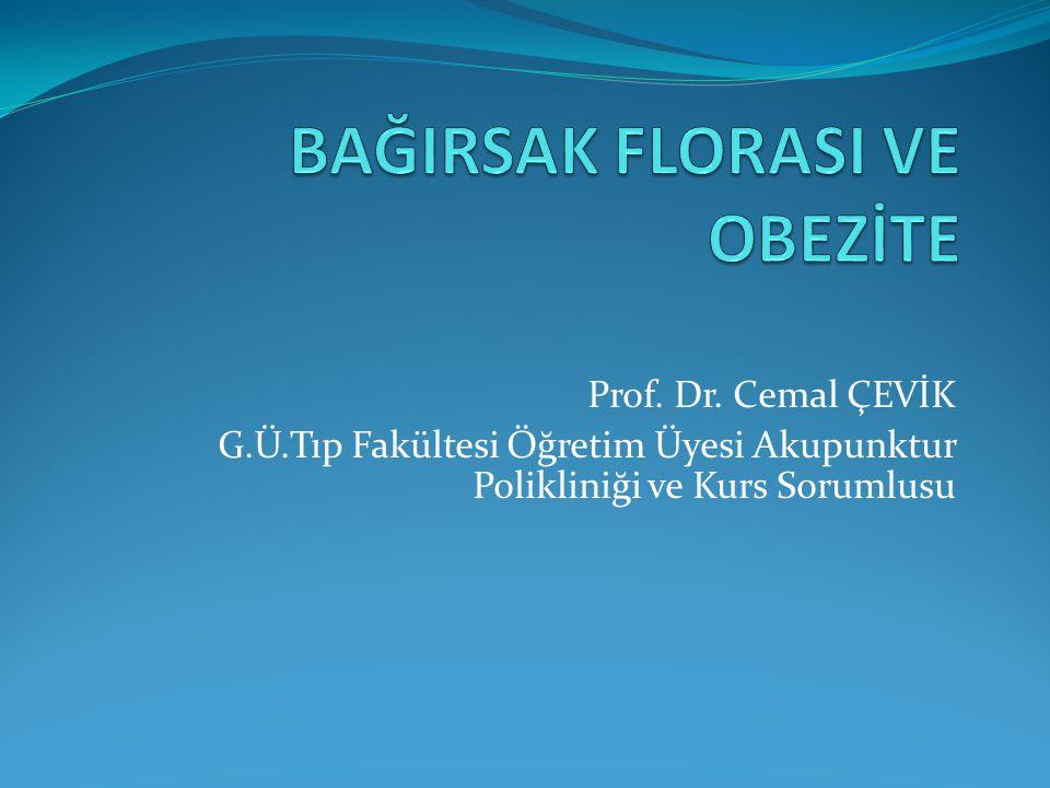 Prof. Dr. Cemal ÇEVİK G.Ü.Tıp Fakültesi Öğretim Üyesi Akupunktur Polikliniği ve Kurs Sorumlusu