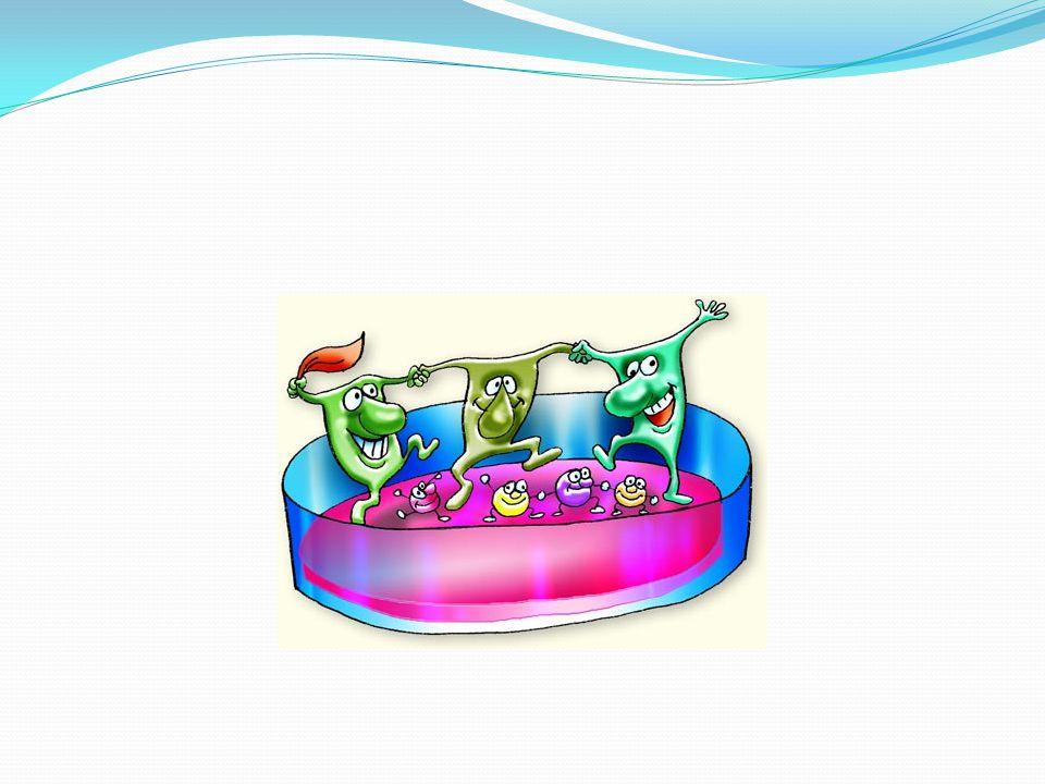 Diyet flora ilişkisi Günlük yaşantımızla ve diyetle microbiata arasında ilişki vardır.