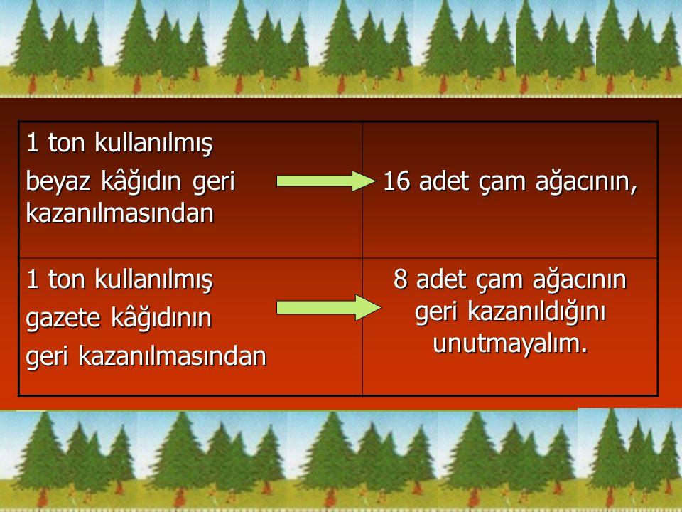 1 ton kullanılmış beyaz kâğıdın geri kazanılmasından 16 adet çam ağacının, 1 ton kullanılmış gazete kâğıdının geri kazanılmasından 8 adet çam ağacının