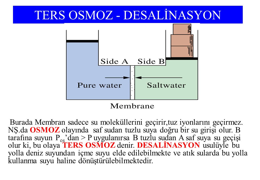 TERS OSMOZ - DESALİNASYON Burada Membran sadece su moleküllerini geçirir,tuz iyonlarını geçirmez.