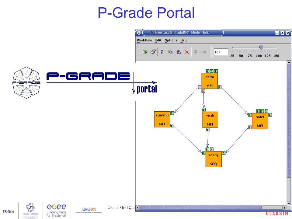 Ulusal Grid Çalıştayı, Ankara, 1 Mart 200724/32 P-Grade Portal