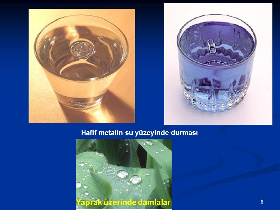 61/44 Hafif metalin su yüzeyinde durması Yaprak üzerinde damlalar