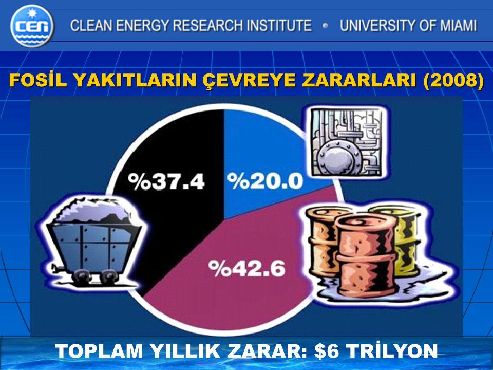 UNIDO MİLLETARASI HİDROJEN ENERJİSİ TEKNOLOJİLERİ MERKEZİ 2004