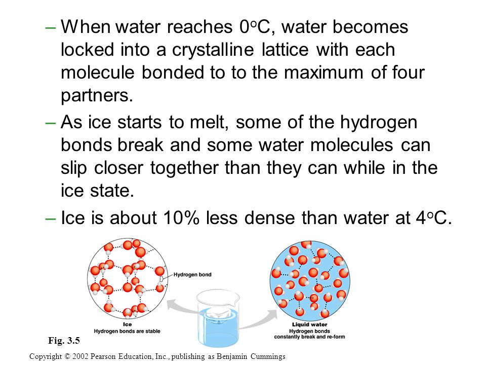 –When water reaches 0 o C, water becomes locked into a crystalline lattice with each molecule bonded to to the maximum of four partners.