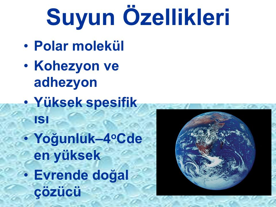 Suyun Özellikleri Polar molekül Kohezyon ve adhezyon Yüksek spesifik ısı Yoğunluk–4 o Cde en yüksek Evrende doğal çözücü