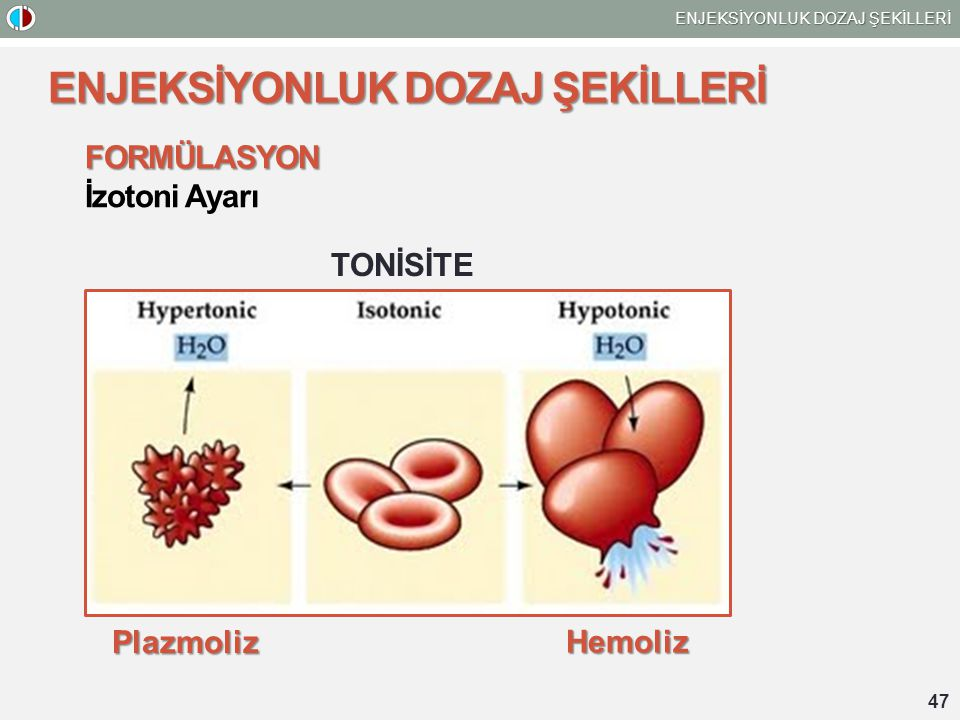 47 ENJEKSİYONLUK DOZAJ ŞEKİLLERİ FORMÜLASYON İzotoni Ayarı TONİSİTE Plazmoliz Hemoliz