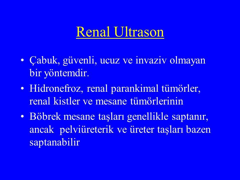 Renal Ultrason Mesane boyutları ölçülerek miksiyon sonrası rezidüel idrar hesaplanır Ultrason hematüri için böbreklerin radyolojik değerlendirilmesinde ilk olarak başvurulabilir ancak IVP, ultrason ve sistoskopi normal ise mutlak gereklidir.
