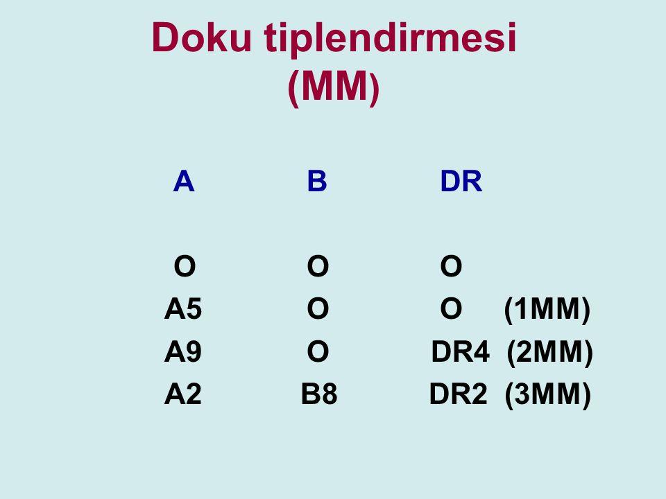 Doku tiplendirmesi (MM ) ABDR OOO A5OO (1MM) A9O DR4 (2MM) A2 B8 DR2 (3MM)