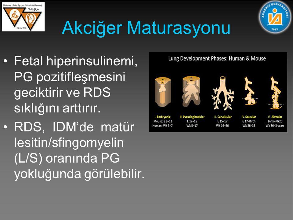 Akciğer Maturasyonu Fetal hiperinsulinemi, PG pozitifleşmesini geciktirir ve RDS sıklığını arttırır.