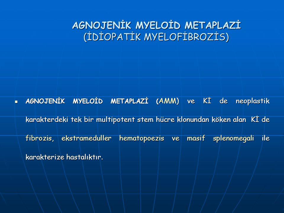 AGNOJENİK MYELOİD METAPLAZİ (İDİOPATİK MYELOFİBROZİS) AGNOJENİK MYELOİD METAPLAZİ ( AMM) ve Kİ de neoplastik karakterdeki tek bir multipotent stem hüc