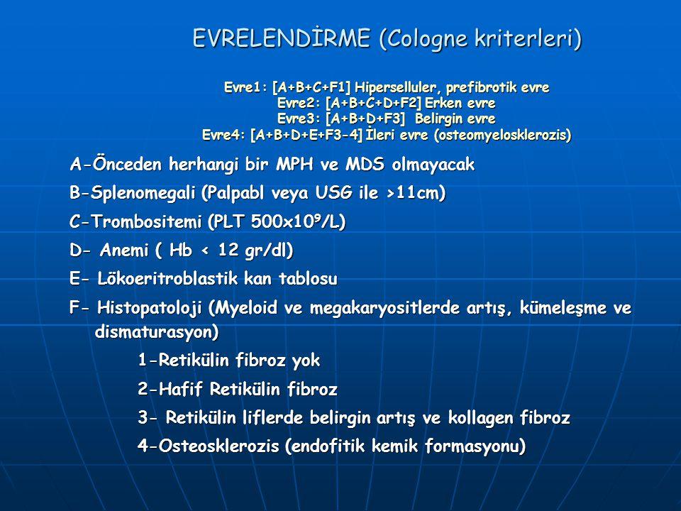 EVRELENDİRME (Cologne kriterleri) Evre1: [A+B+C+F1] Hiperselluler, prefibrotik evre Evre2: [A+B+C+D+F2] Erken evre Evre3: [A+B+D+F3] Belirgin evre Evr