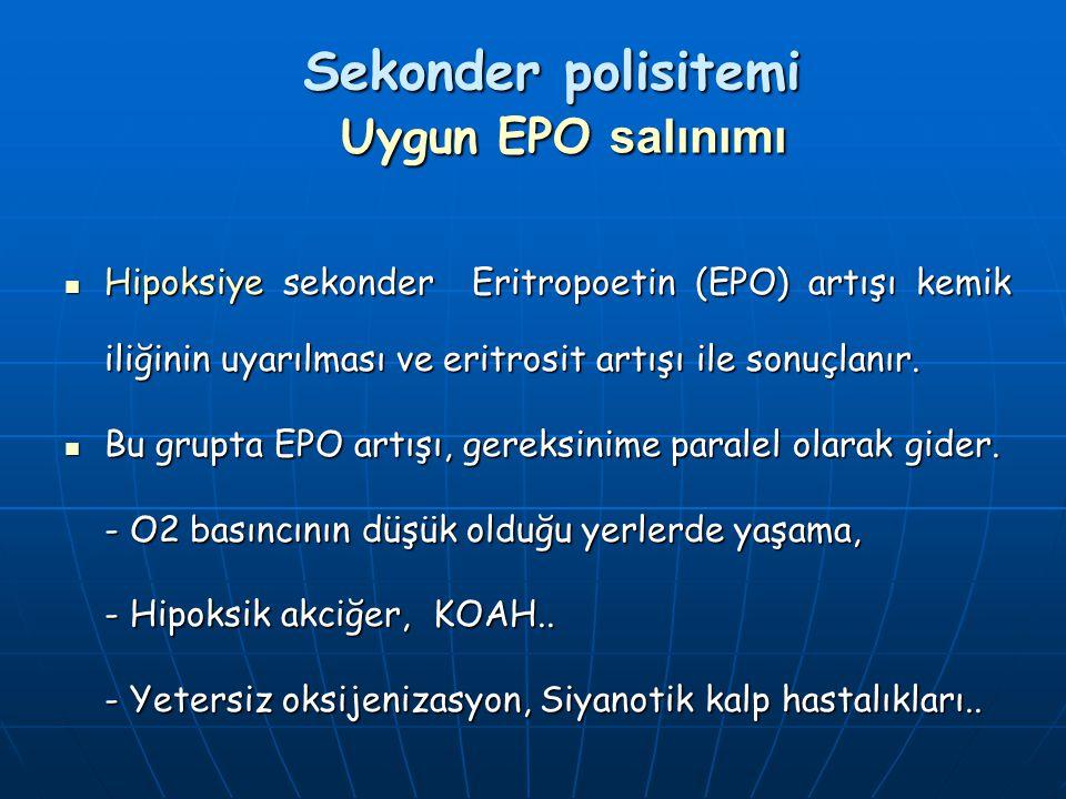 Sekonder polisitemi Uygun EPO salınımı Hipoksiye sekonder Eritropoetin (EPO) artışı kemik iliğinin uyarılması ve eritrosit artışı ile sonuçlanır. Hipo