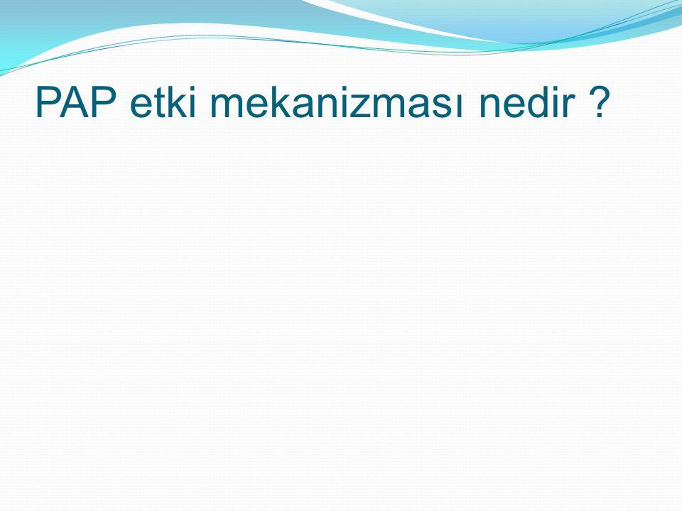 PAP etki mekanizması nedir ?