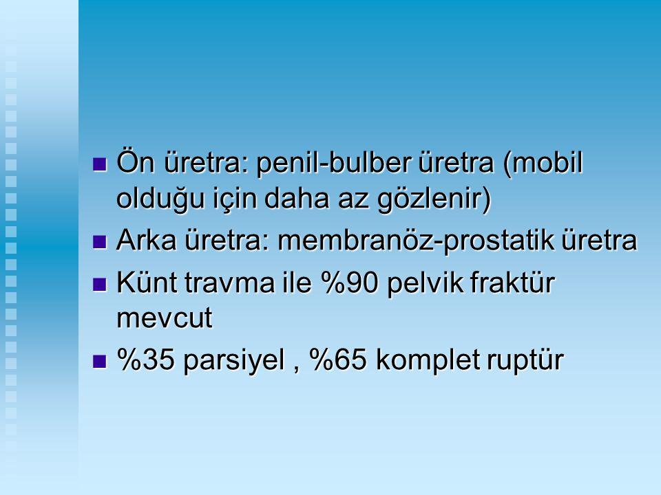 Ön üretra: penil-bulber üretra (mobil olduğu için daha az gözlenir) Ön üretra: penil-bulber üretra (mobil olduğu için daha az gözlenir) Arka üretra: m